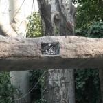 باغ کتیبه های کاخ نیاوران